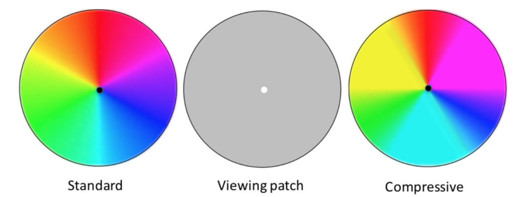 Fig 1. Two versions of the color circle, with test disks for viewing their afterimages. View as close as possible for optimal effect